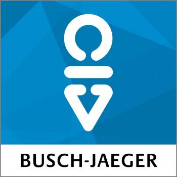 Busch-Radio iNet